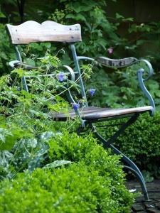 garden cahir